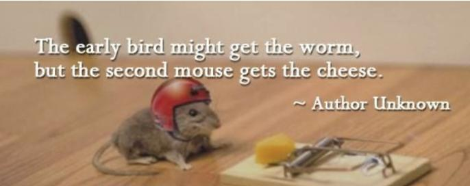 What sort of mouse is your organisation?